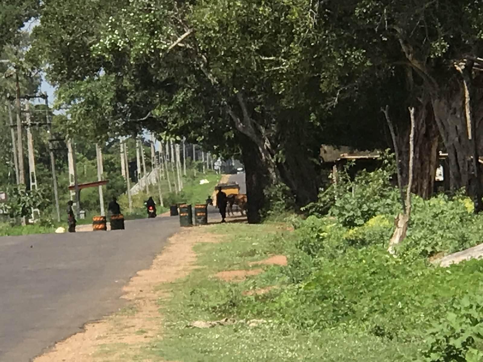 Image result for வவுனியா மன்னார் வீதி பம்பைமடு பகுதியில் இராணுவத்தினரால் சோதனை சாவடி