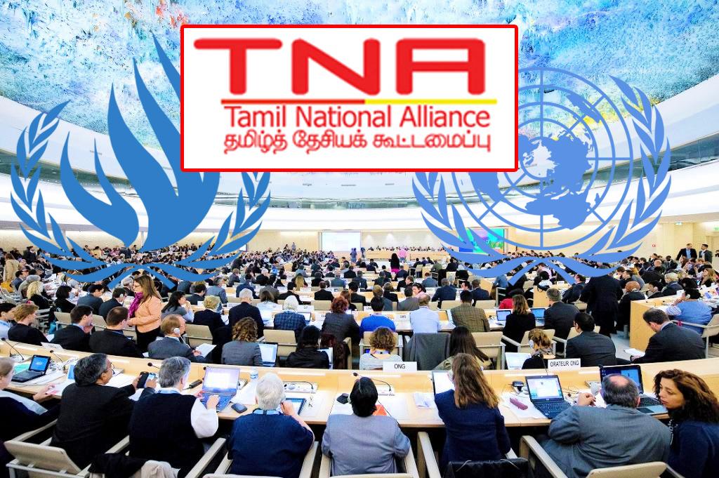 UN-TNA.jpg