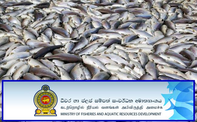 நடுக்கடலில் தமிழக மீனவர்கள் 7 பேர் கைது: இலங்கை கடற்படை மீண்டும் அத்துமீறல்